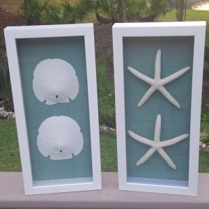 shadow boxes-crop
